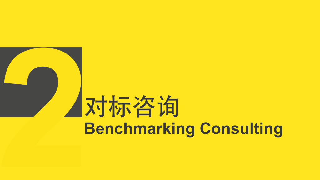 02.Benchmarking Consulting.1